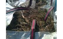 Recogida de una saca (1mt3) de restos de jardín