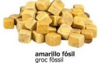 Daus groc fòssil