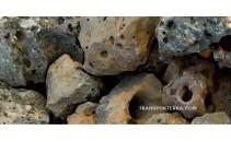 Pedres per rocalla